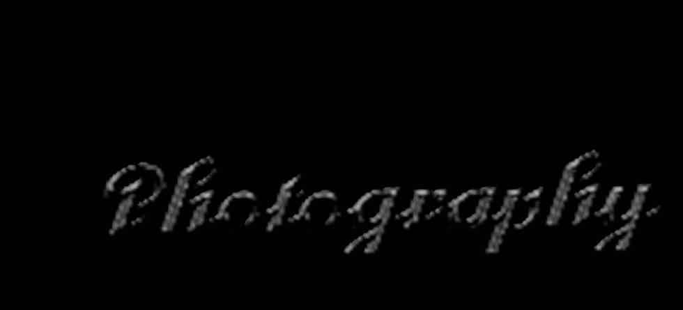 Ivan's Photography
