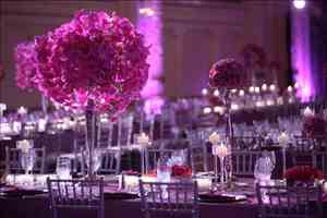 Porche Weddings and Special Events