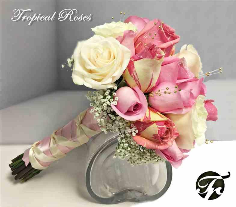 Tropical Roses